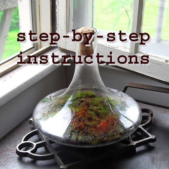 terrarium instructions pdf how-to