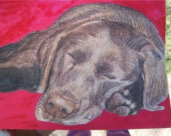 Pet Portrait Chocolate Labrador Watercolor Memorial U Provide Picture or Idea Made to Order 9 x 12 by Pigatopia