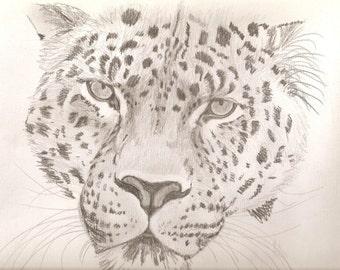 Portrait Pencil Sketch 9 x 12 inch Big Cat U Provide Picture by Pigatopia