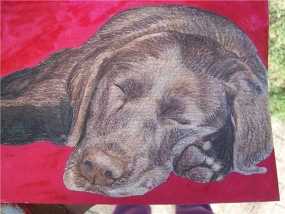 Pet Portrait Chocolate Labrador Watercolor Memorial U Provide Picture or Idea Made to Order 9 x 12 by Pigatopia