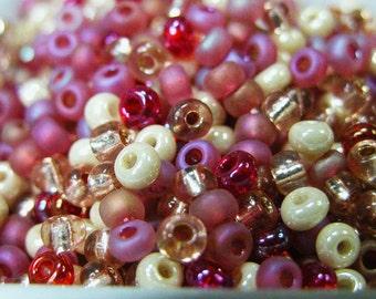 Raspberry Cheescake Pink and Cream Czech Seed Bead mix Size 6 50 gram lot