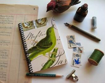 Green Bird - Notebook Spiral Bound - 4x6in