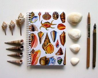 Shells A6 Small Spiral Notebook, Blank Writing Spiral Bound Pocket Journal Diary, Recipes Notebook, Natural History Gifts Under 15, Ciaffi