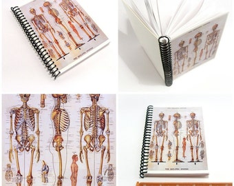 Anatomy Chart Spiral Pocket 4x6 Inches Notebook, Cute, The Skeletal System, Blank Sketchbook, Writing Spiral Bound Diary Journal