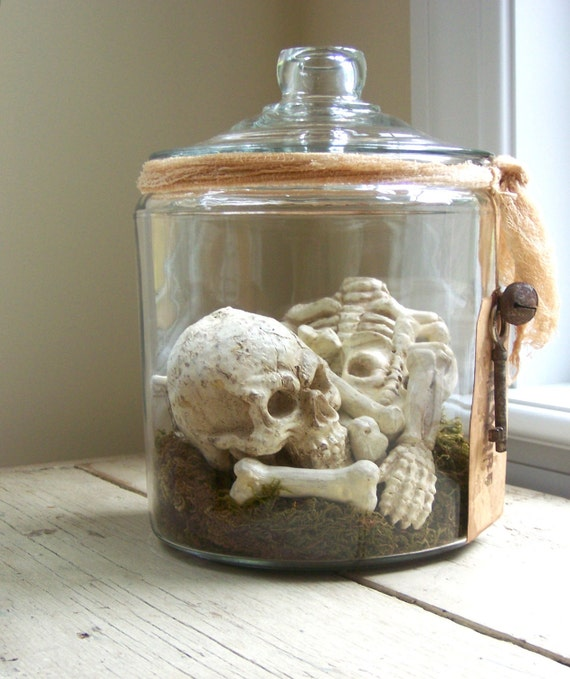 Bones - Skeleton In Apothecary Jar - RESERVED