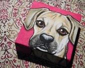 Custom Pet Painting Portrait 4x4