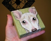 Custom Pet Portrait Painting 4x4
