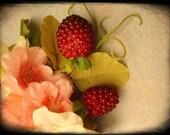 Blushing Berries Fascinator