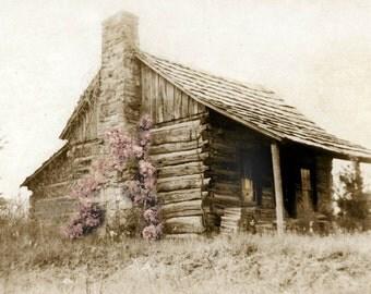 Antique photo cabin photographic print