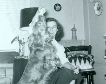 vintage photo LAdy w spaniel DOg photograph