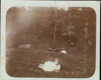 vintage photo 1905 Baby and Dogs Down by Creek