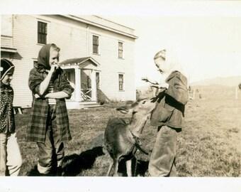 vintage photo 3 Farmgirls feed captive deer