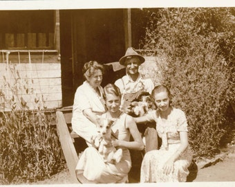 vintage photo Farm Family on Porch Holding lots of Puppy Dogs