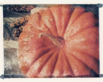 Color Transfer Indian Corn and Pumpkin Vintage photo Card