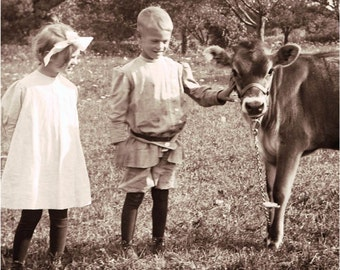 Farm Children with Their Pet Cow in Field Vintage Photo