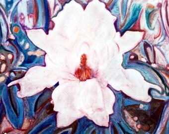 Magnolia Flower Blossom  Fine Art Photography Mixed Media Print
