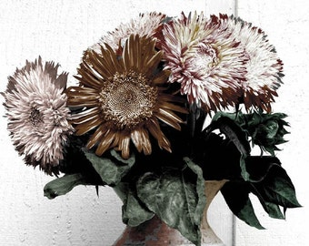 Sunflowers in Metal Vase tinted Fine Art Photograph