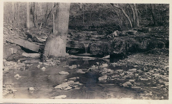 vintage photo Simply a Beautiful Creek in the Woods 1910 landscape