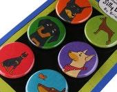 Doberman Pinscher Silly Dog Magnet Set
