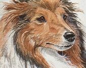 ACEO  Art Print Sheltie Dog by LaRusc FrEE Shipping