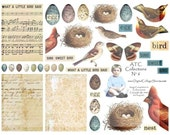 Bird And Nest  Digital Collage Sheet ATC ACEO Images DCS-310 DigitalCollageSheets, Printables, Downloads