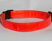 RESERVED LISTING Reflective Dog Collar - Safety Collar - Lots of colors including Reflective Hot Pink