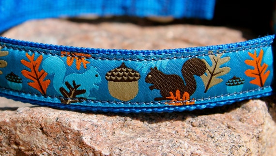 Squirrels and Acorns - Adjustable Dog Collar - Labrador - Nature Lover