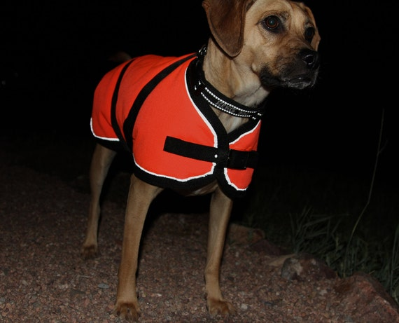 Warm Winter Dog Coat size 20 - waterproof, durable, reflective - Horse Blanket style with metal buckles