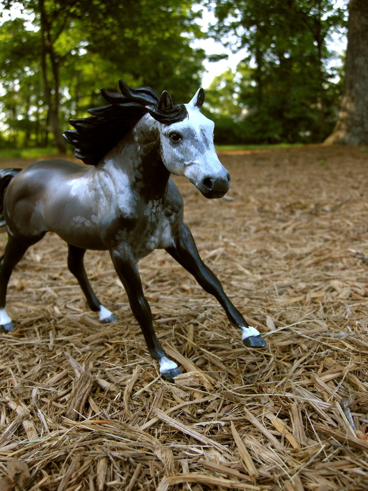 ней картинки лошадей брейер на природе что реальными
