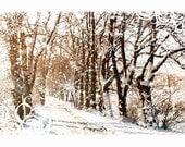 Winter - Original Art Design - 10 Cards with 10 Recycled Brown Kraft Envelopes