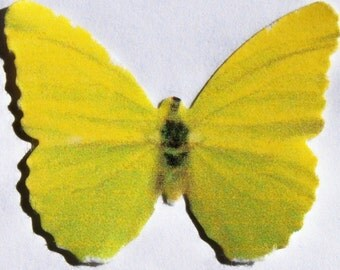 24 Yellow, Faded Green Paper Butterfly Embellishments for DIY weddings, baby shower, school kits, DIY ACEO, photo prop, butterfly wall decor