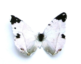 24 White, Black and Pale Pink Butterfly Paper Embellishment For Scrapbooking, Weddings, Baby Shower, Butterfly Wall Decor, ACEO, Altered Art