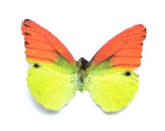 24 Orange And Yellow Butterfly Paper Embellishment For DIY weddings, baby showers, school kits, DIY ACEO, photo props, wall decor