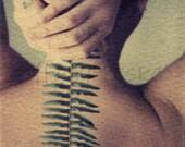 Ferntebrae - Original Polaroid Image Transfer in 8x10 Archival Mat