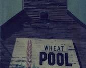 Wheat Pool - 3x4 Polaroid Image Transfer ORIGINAL in 8x10 Archival Mat