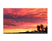 Sunset Looking Over The Blue Moutains, Grose Wold, New South Wales, Australia, 8x12 Photograph