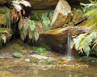 Waterfall Photograph, Burralow Camping Site, Near Bilpin, New South Wales, Australia, 9x6 Photograph