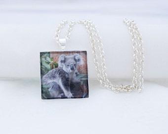 Australian Koala Necklace, Shiny Silver, Photography, Photo Jewelry, Koala Bear, Animal Necklace