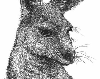 Kangaroo Art Print - 5x7 OR 8x10inches - Australian animal wildlife, pen and ink drawing print