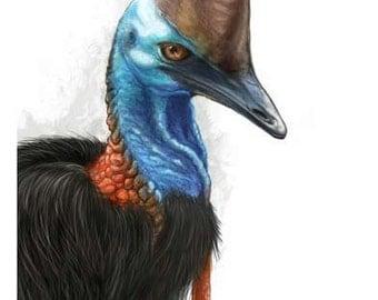 Southern Cassowary - Australian Bird Print of original digital painting - bird art, nature, rainforest, Queensland, wildlife wall art