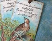 Bird Tags - Woodthrush Tags - Birds Nest Tags - Poem Woodthrush Shadows - Set of 4