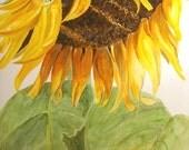 Original Watercolor Painting - Sunflower - Sunshine
