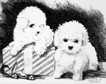 Christmas Card - Puppies - Present