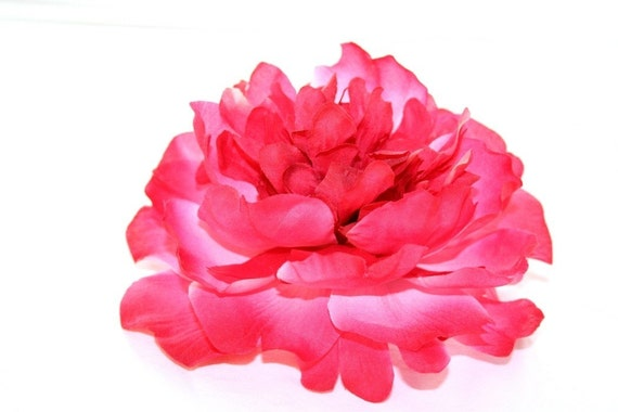 Large Bright Pink Peony -- 6 inches