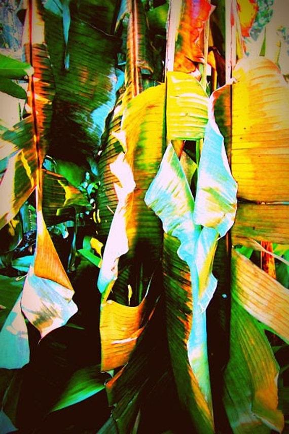 Wilted Banana Leaves, Green Abstract Art,  Botanical Wall Art, Banana Tree Wall Art, Yellow Green Art, Abstract Plant Print, Tropical Plant