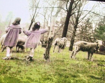 10 Art Postcards - Victorian Girls with Spring Lambs - Sheep Farm Post Card Set from kNotes for kNitters
