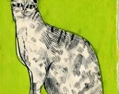 Chartreuse Lady Cat (original drawing, 2012)