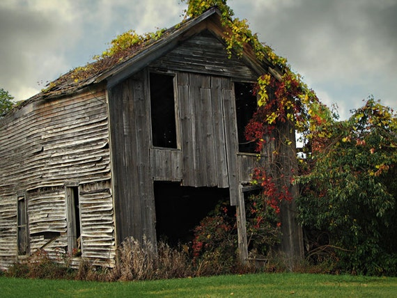 Fall Finery - Rustic Barn Photo Art Print 8x10