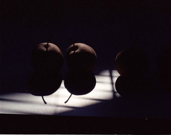 black white beige orange photograph still life with Asian pears  shadows abstract fruit  ASIAN PEARS