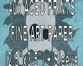 Fine Art ACEO prints (40 qty) with sleeves